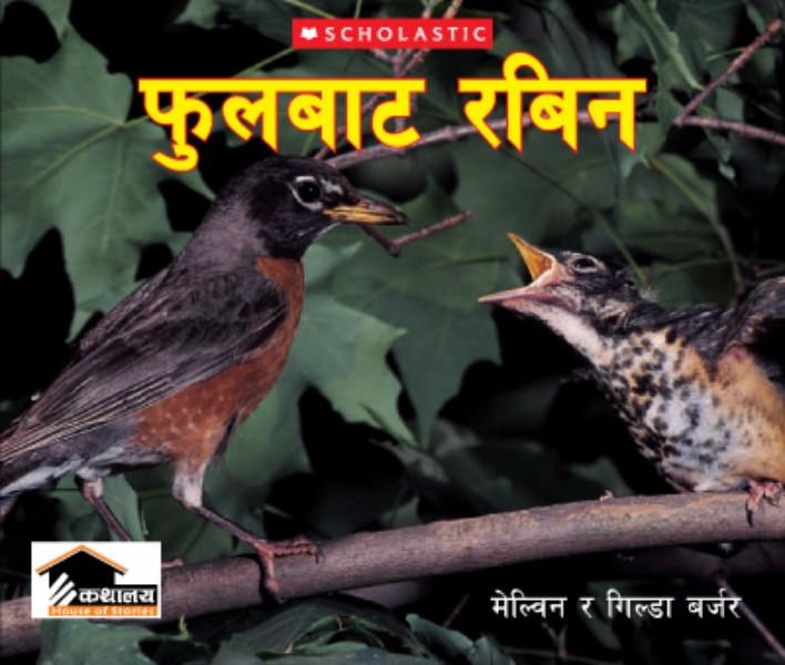 fulbata-robin