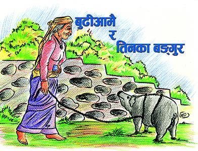 budi-aamai