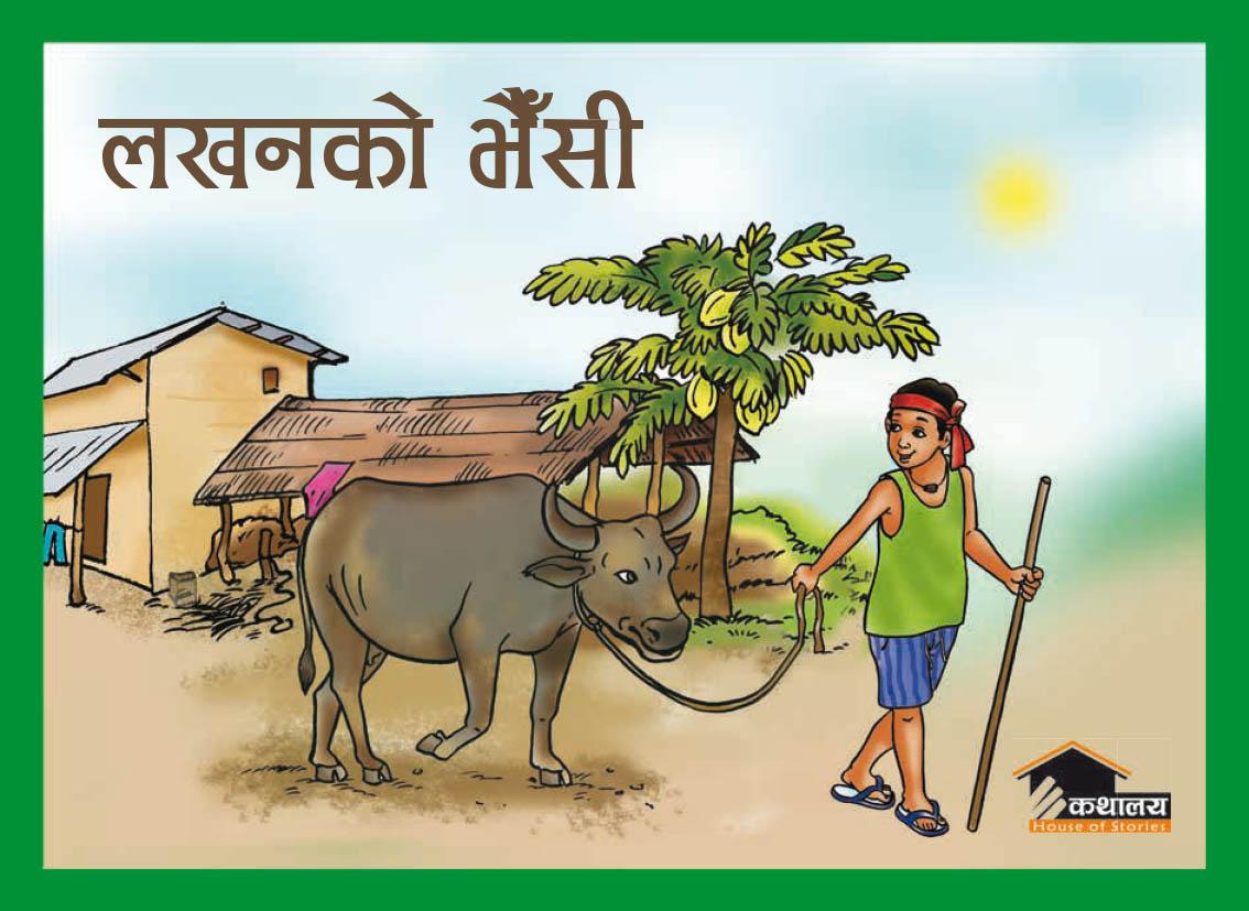 lakhanko-bhainsi